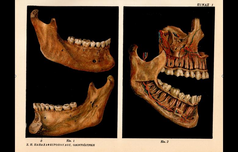 """""""Οδοντοϊατρική Εις Δέκα Μέρη"""": Μνημειώδη οδοντιατρική βιβλιογραφία του 1923"""